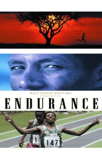 Endurance The Movie - Poster